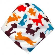 CoolMax吸濕透氣防水口水巾、領巾 _ Color Animal